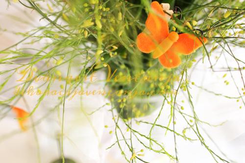 cvetni-aranzman-narandzasti-detalj1