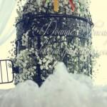 Ana & Slavko, suncokreti & vintage wedding
